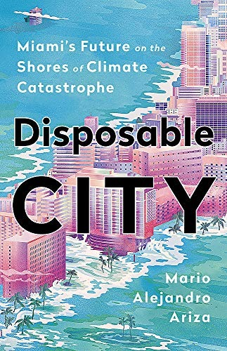 Disposable City cover