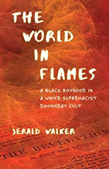 cover image of World in Flames by Jerald Walker