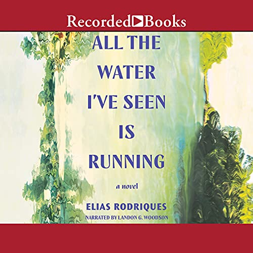 cover image of All the Water I've Seen Is Running by Elias Rodriques