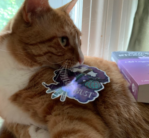 orange cat with a sticker in its mouth