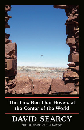 The Tiny Bee cover