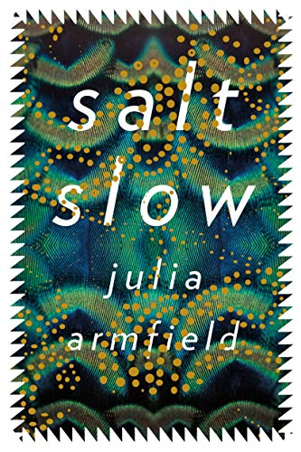 Book Cover for Salt Slow