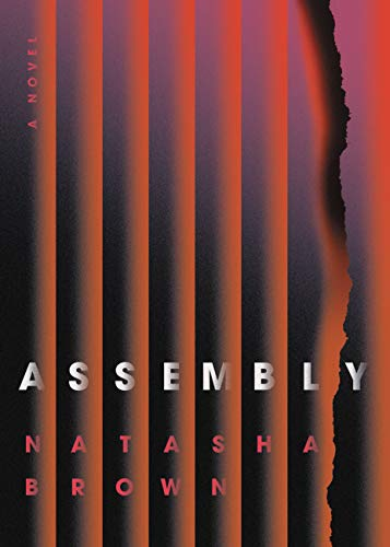 cover of Assembly by Natasha Brown, featuring several straight lines and one that looks as though it is burnt