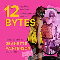 A graphic of the cover of 12 Bytes