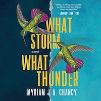 A graphic of the cover of What Storm What Thunder